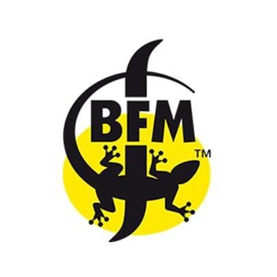 BFM MANDRAGORE